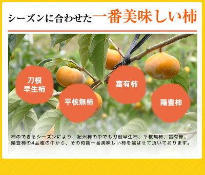だから、美味しい。紀州産の美味しい柿だけを使用してます。