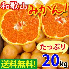 和歌山の美味しいみかんをたっぷり召し上がって頂きたいから!10kg×2箱、合計20kgでお届け!ご...