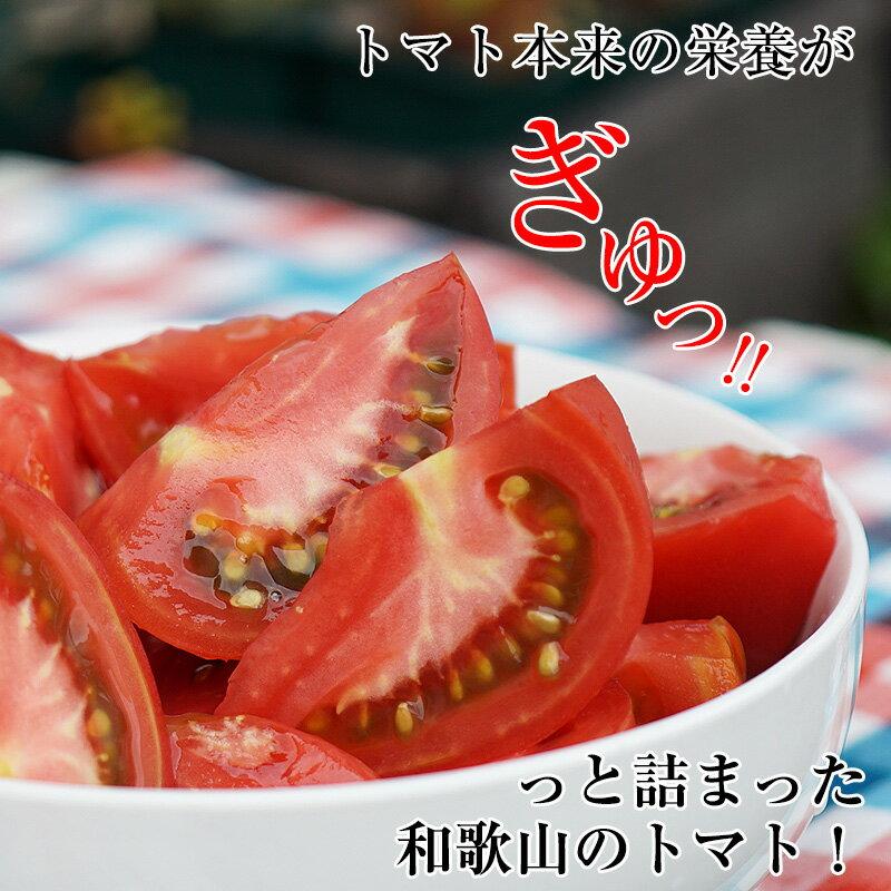 和歌山の夏トマト