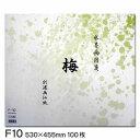水墨画用箋 梅 F10(100枚入り)