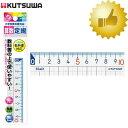 クツワ/算数定規(10cm)HS10A 教科書の内容に準じた学習ができる定規です STAD(スタッド)【学童文具】【筆記具】【鉛筆】【分度器・定規】