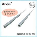 タス・コーポ/ハシ鉄ロコシリーズ 西武鉄道30000系 L-15 眺めて楽しい♪電車の形をしたお箸!