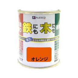 カンペハピオ 00027640441001 1回塗りハウスペイント オレンジ 0.1L