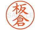 シヤチハタ/XL-9(板倉)