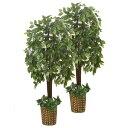 インテリアグリーン2点セット(ベンジャミン&ベンジャミン) 356720送料無料 フェイクグリーン 人工観葉植物 インテリア ベンジャミン ファミリーライフ 【TD】 【代引不可】