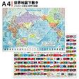 下敷き 世界地図 A4判 [PSWM/東京カートグラフィック]【単品ならネコポスOK!】【RCP】