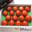 高知産 フルーツ トマト小箱 【ギフト】【3月中旬以降はクール便】