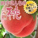 桃!モモ!もも! 送料無料 紀州和歌山田中さんちの大きなわかやまの桃(もも) 約2kg箱 和歌山...