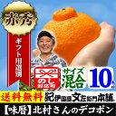 デコポン10キロ(5kg×2箱)豊作会[味暦]ブランド 【送...