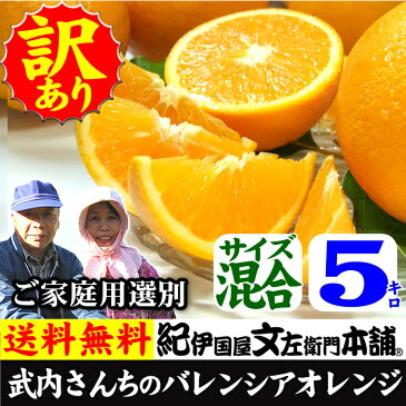 武内さんちのバレンシアオレンジご家庭用【送料無料】サイズ混合5kg有田郡吉備町奥(おき)地区から