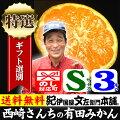 紀州和歌山西崎さんちの有田みかん約3kg特選ギフト品