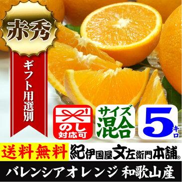 【送料無料】バレンシアオレンジ[レギュラー品]5kg・有田みかんのふるさと和歌山県産・紀州有田産
