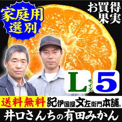 有田みかん(和歌山県産)
