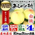 あら川の桃【白桃種】手選り【秀選】4kg