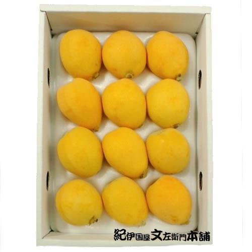 フルーツ・果物, びわ 123L4L50g70g