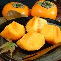 紀州和歌山の富有柿