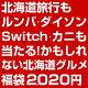 福袋 2020 \総額100万円!/合計2020名に当選のチャンス!北海道旅行もルンバ・ダ…