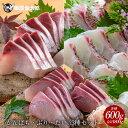 匠が育てた極上の真鯛、ぶり、カンパチ3種セット 刺身 各種6