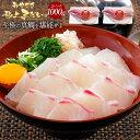 匠が育てた極上の鯛 タイ たい 刺身 1000g 刺身はもちろんのこと、塩焼き、しゃぶしゃぶ、ソテー