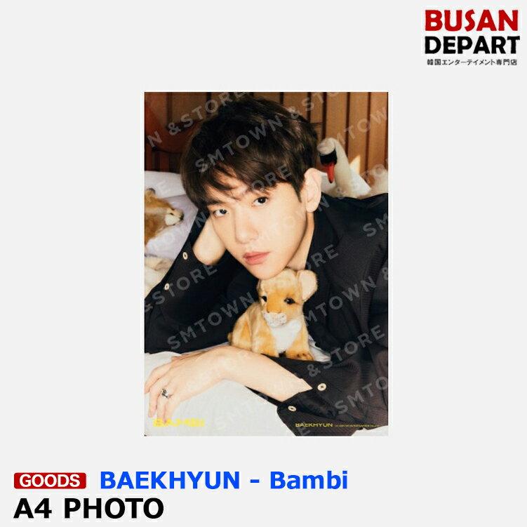韓国(K-POP)・アジア, 韓国(K-POP) BAEKHYUN 07 A4 PHOTO - Bambi EXO SM MD 1