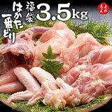はかた一番どり 人気のお肉4種福袋 3.5kg【送料無料】 あらい 鶏肉 もも肉 むね肉 手羽先 ササミ 福岡 お取り寄せ 福岡県よかもんショップ