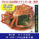 富山湾より産地直送でお届けします。富山湾産 紅ズワイガニ 姿(天然・海洋深層水で下ゆで済...