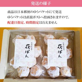 【1000円ポッキリ送料無料】群馬お土産桐生名物花ぱん