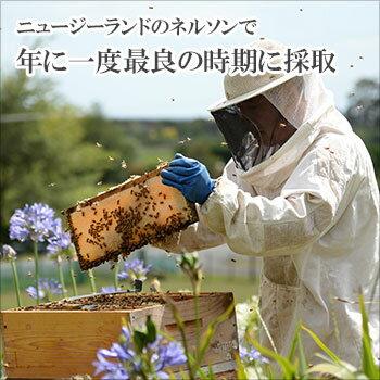 ワイルドマヌカ250g【送料無料】ニュージーランド産無添加・非加熱の天然はちみつ蜂蜜ApBee