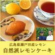 広島レモンケーキ 詰め合わせ ギフト 10個入り×2箱 化粧箱入り【送料無料】【檸檬】【広島みやげ】