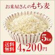 【送料無料】お米屋さんのもち麦 お得な5kg(1kg×5袋) もち性のもち麦!