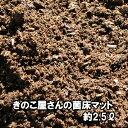 きのこ屋さんの菌床マット 昆虫マット 約2.5リットル【送料無料】【無農薬】【家庭菜園】 その1