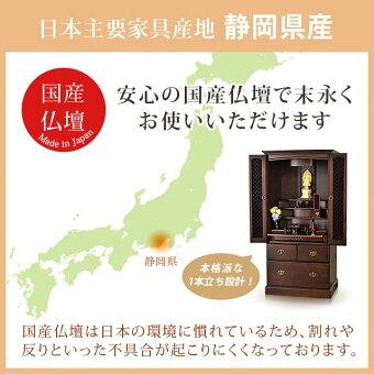 【ロレアル20×42号】静岡県産