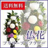 プリザーブドフラワー仏花想(L寸)