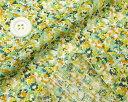 かわいい?小花プリントシルバーライン/ストライプドビーグリーン&オレンジ