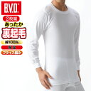 【2枚セットで40%OFFセール】BVD あったか 裏起毛 インナー 綿100% 防寒 丸首長袖Tシャツ (LL) あったか メンズ tシャツ 暖か 大きいサイズ bvd 丸