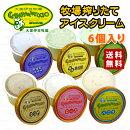 カンパナッチョ(大美伊豆牧場)手作りアイスクリームギフト