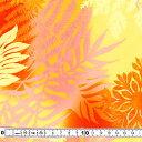 キャシー中島 生地(プリント生地)・キャシーマム・ハワイアンキルトに10cm×3(30cm)よりキ...