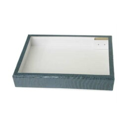 志賀昆虫 ボール紙製標本箱 大型 27.2×20.5×4.8cm ガラス蓋付 志賀昆蟲普及社 シガコン 自由研究