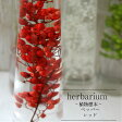 【あす楽対応品】【Healing Bottle】ハーバリウムボトル ペッパー<レッド>−植物標本−母の日ギフト