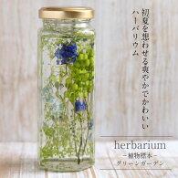 送料無料【herbariumBottle】ハーバリウムボトル八角ボトル【Medium】フラワーアレンジ<グリーンガーデン>−植物標本−