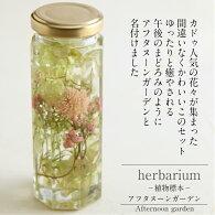 送料無料【herbariumBottle】ハーバリウムボトル八角ボトル【Medium】フラワーアレンジ<午後の庭>小さな花束−植物標本−