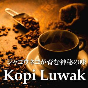 ジャコウネコが育んだ神秘のコピルアックコーヒーコピルアク (中深煎) 100g