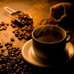 ジャコウネコが育んだ神秘のコーヒーコピルアク (中煎)100g