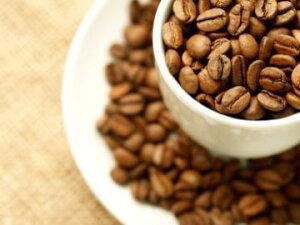 【送料無料/50%OFF/宅配便配送/何個でも承ります】【初回限定】お試しコーヒーセット 100g...