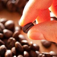 ホンジュラス_【バッハ コーヒー グループ】珈琲_アメリカンタイプのコーヒーが好きな人向きのコーヒー豆_粉_100g_原産国_ホンジュラス_産地_中南米系_ストレートコーヒー_浅煎り_自家焙煎_アラビカ種_水洗式_コーヒー_豆