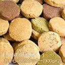 毎日健康応援!!雑穀の旨み。ぎっしり。20雑穀入り豆乳おからクッキー1kg