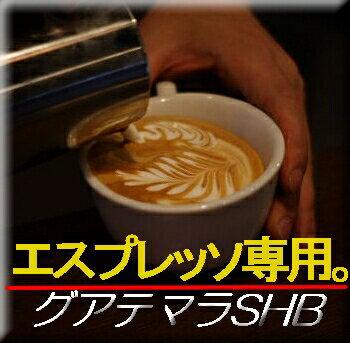■送料無料■ 【エスプレッソ用 コーヒー豆】グァテマラ・SHB 生豆時450g