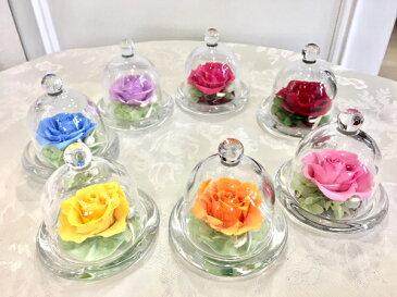 プリザーブドフラワー ガラスドーム お誕生日 お供え 贈り物 お祝い 記念日 プリザーブドフラワー ミニガラスドーム
