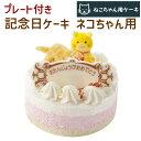 記念日ケーキ 猫用 ネコちゃん用 ペットケーキ 誕生日ケーキ バースデーケーキ 猫用ケーキ (ペットライブラリー or partnerfoods)
