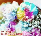 敬老の日 レインボーカーネーションの花束 5本 楽ギフ_包装 フラワーギフト ギフト 贈り物 プレゼント お祝い あす楽【rainbow5】